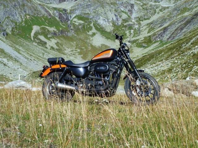 Foliendekor Harley Davidson